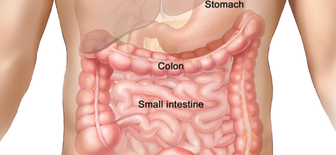 Benefits Of Colon Hydrotherapy.